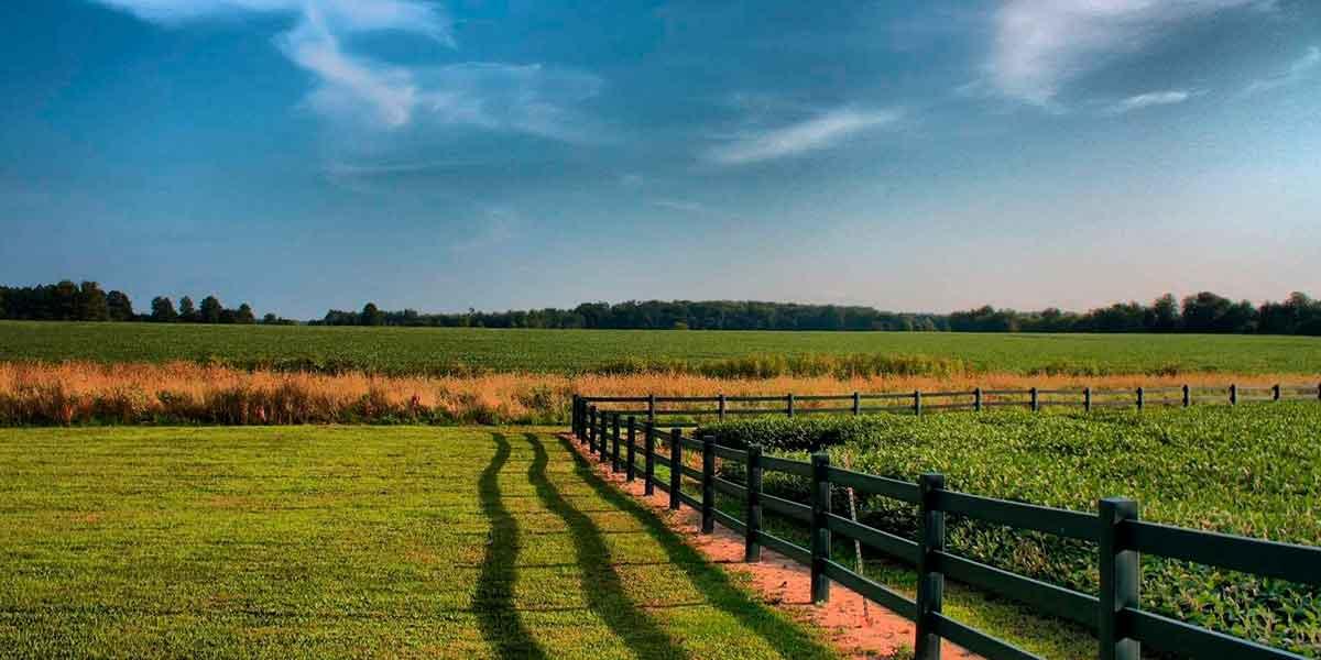 Займ под залог земельного участка краснодар